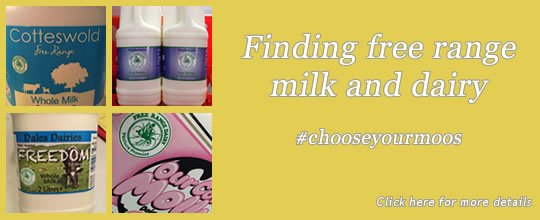 Free Range Dairy   Finding free range milk and dairy