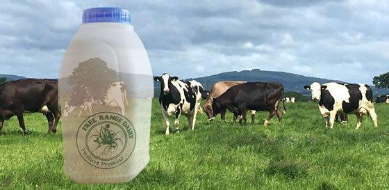 Free Range Dairy | Transparency