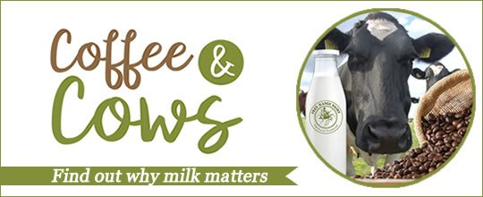 Free Range Dairy | Coffee & Cows Campaign Slide