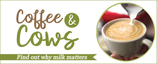 Free Range Dairy | C0ffee & Cow Campaign Slide