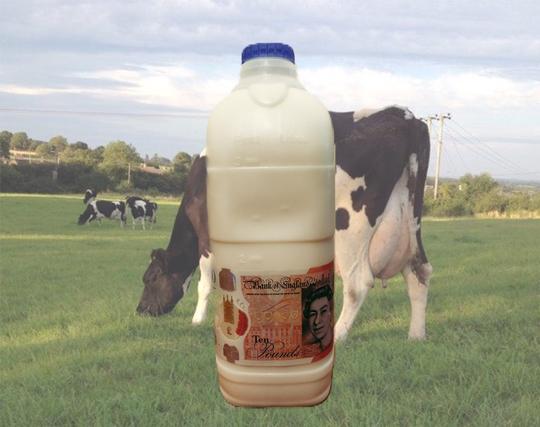 Free Range Dairy | Ethical Milk